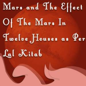 12 houses and mars