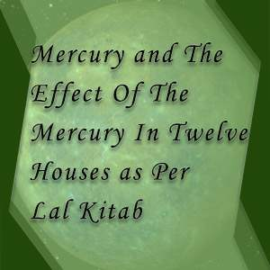 12 houses and mercury