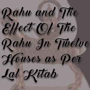 12 houses and rahu